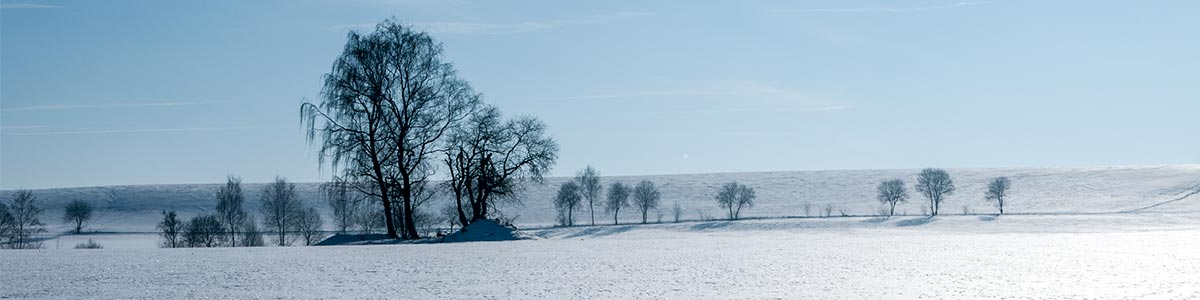 Header Winter Landschaft-ZiH 201