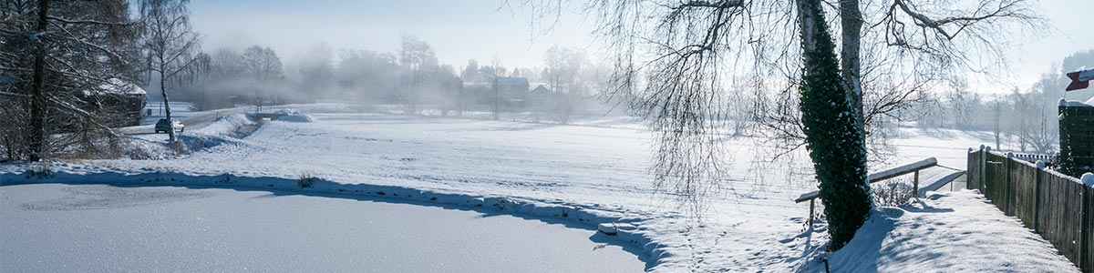 Header Winter Nentschau 212