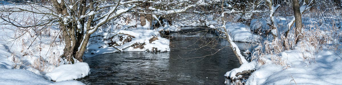 Header Winter Regnitz 201